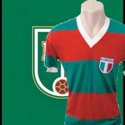 camisa retro Palmeiras gola V coca cola
